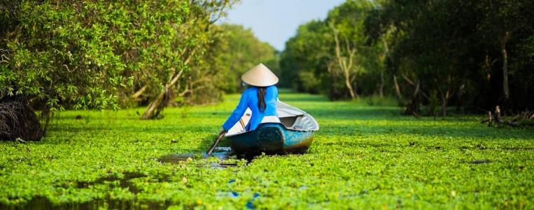 Vietnam attracts curiosity of tourists